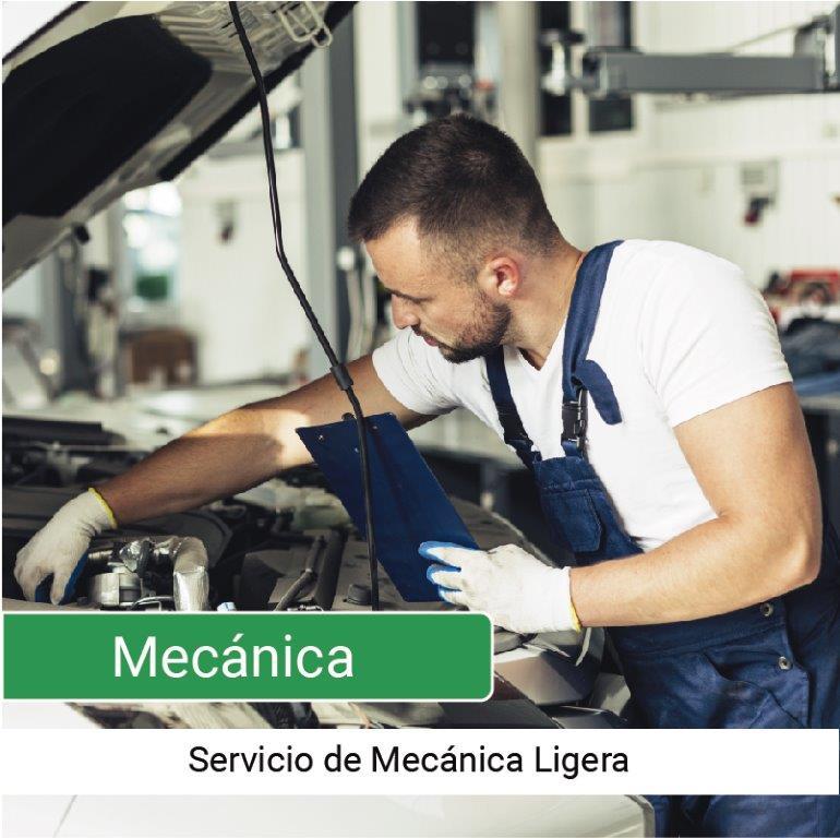 Servicio Mecánica Ligera